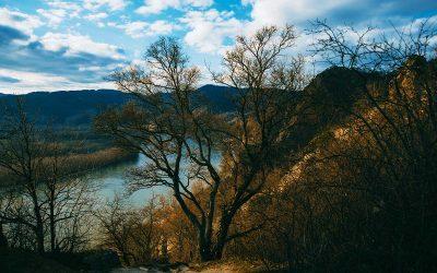 Dunav – neiskorišćena šansa Vojvodine