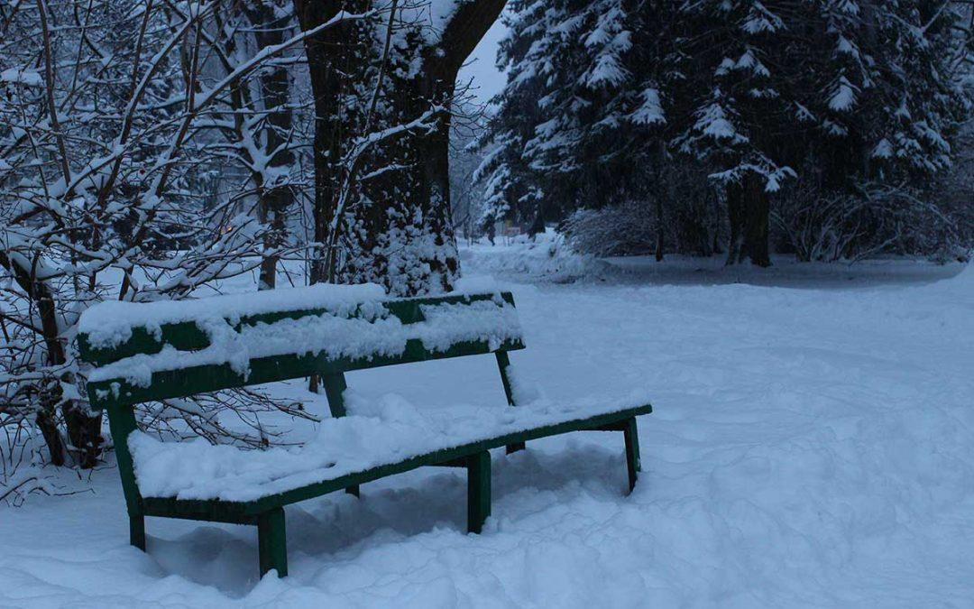 Ako jedne zimske noći putnik – Kako postati glavni junak romana.