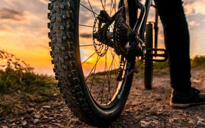 Vojvodina se shvata na biciklu